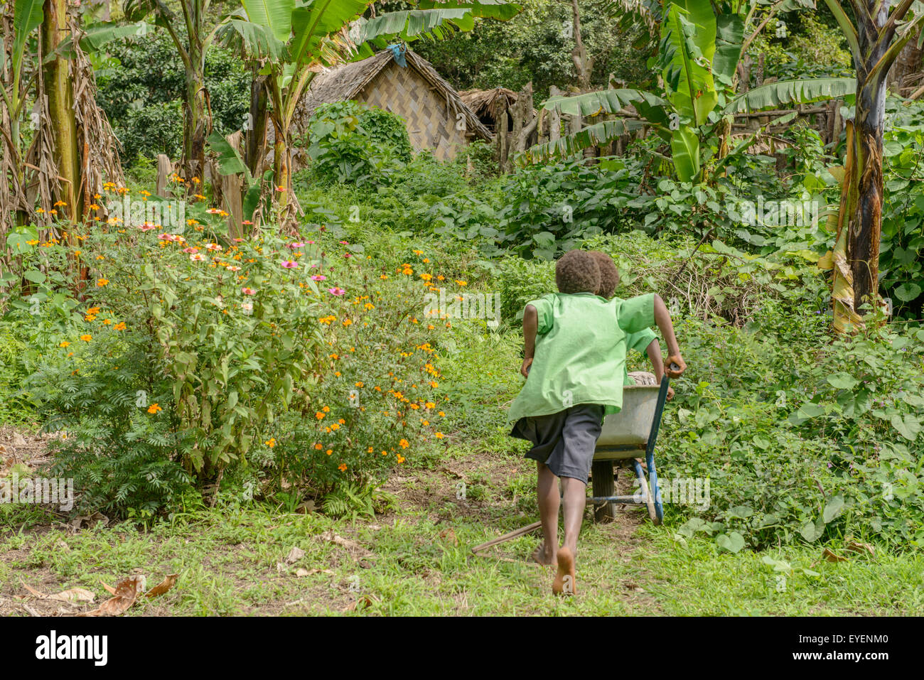 Children playing with wheelbarrow in school garden, Vanuatu - Stock Image