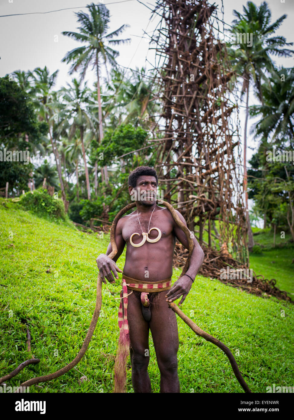 A land diver on Pentecost Island with the land diving tower behind him; Pentecost Island, Vanuatu - Stock Image