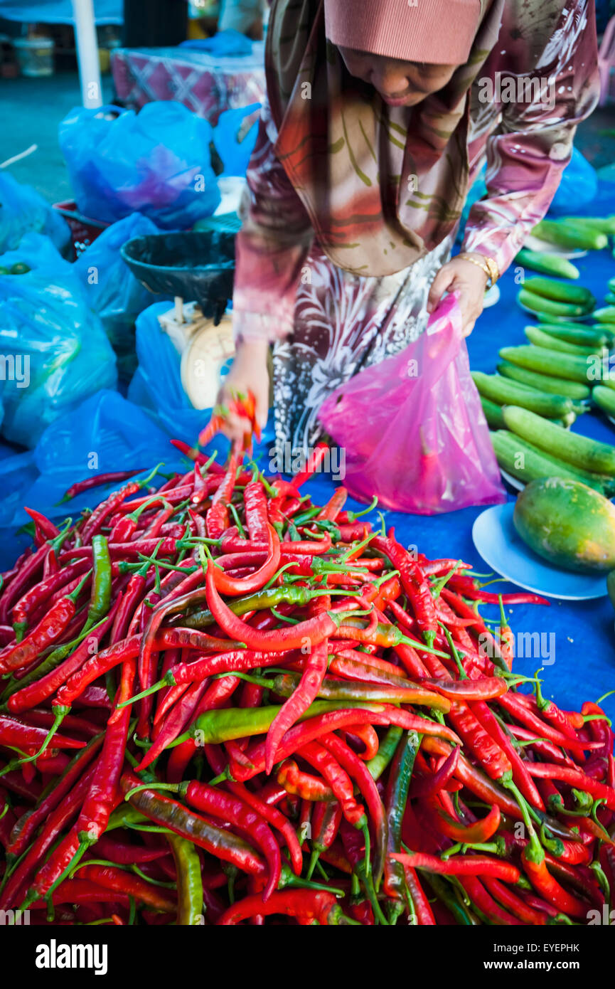 Chillies in the local market; Bandar Seri Begawan, Brunei - Stock Image