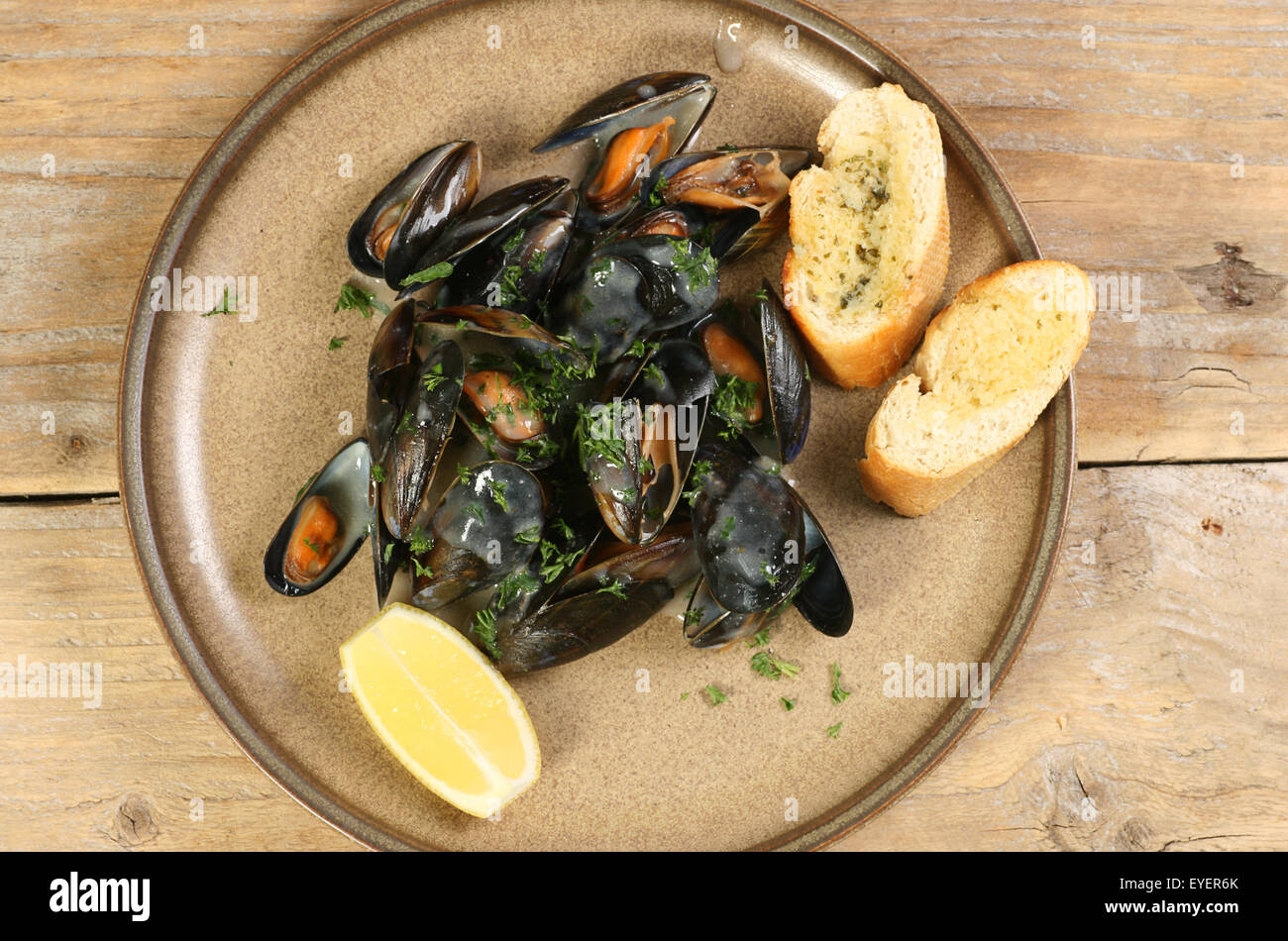 plate of cooked mussels in white wine sauce - Stock Image
