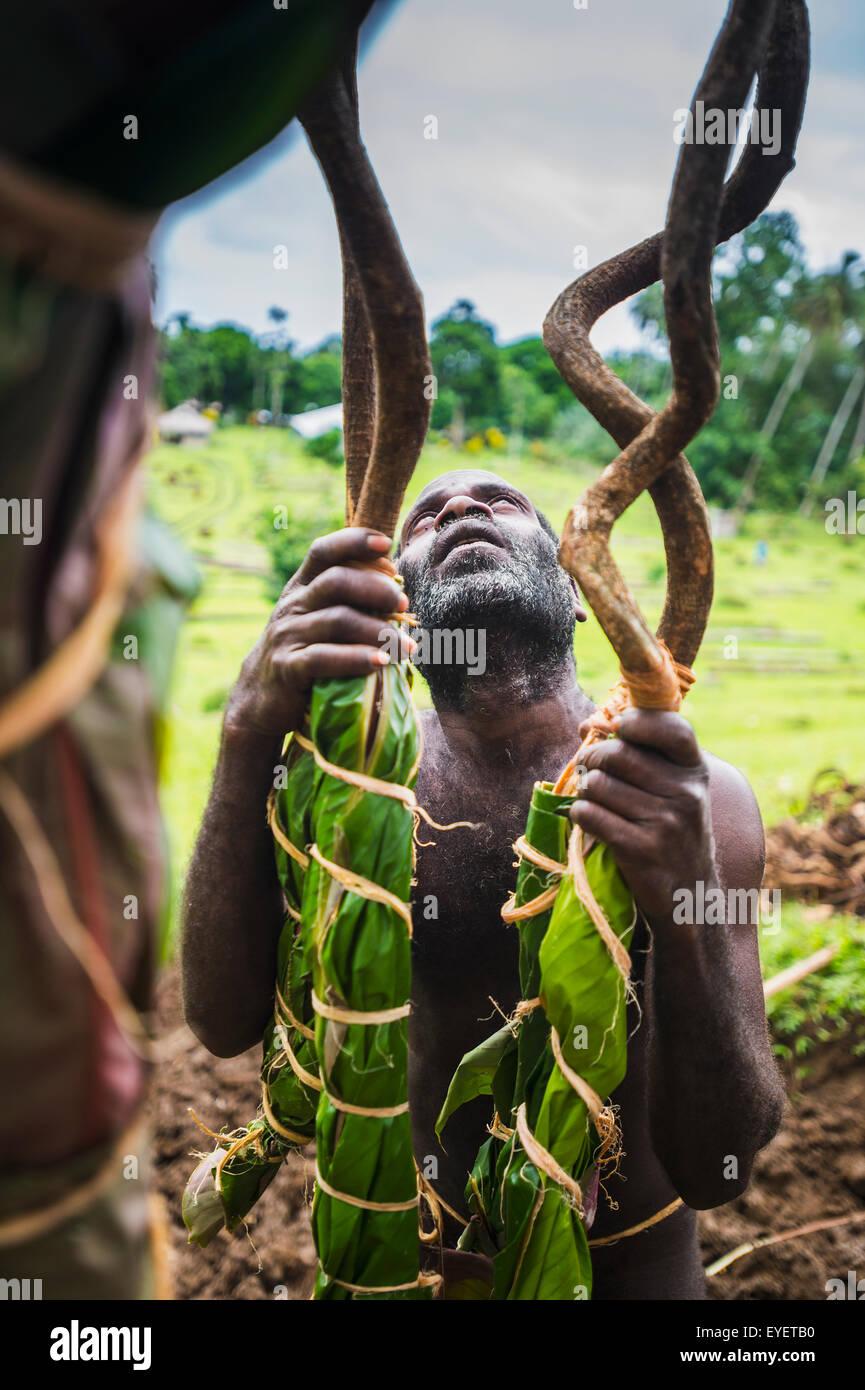 Pentecost land divers prepare the tower for jumping; Pentecost Island, Vanuatu - Stock Image
