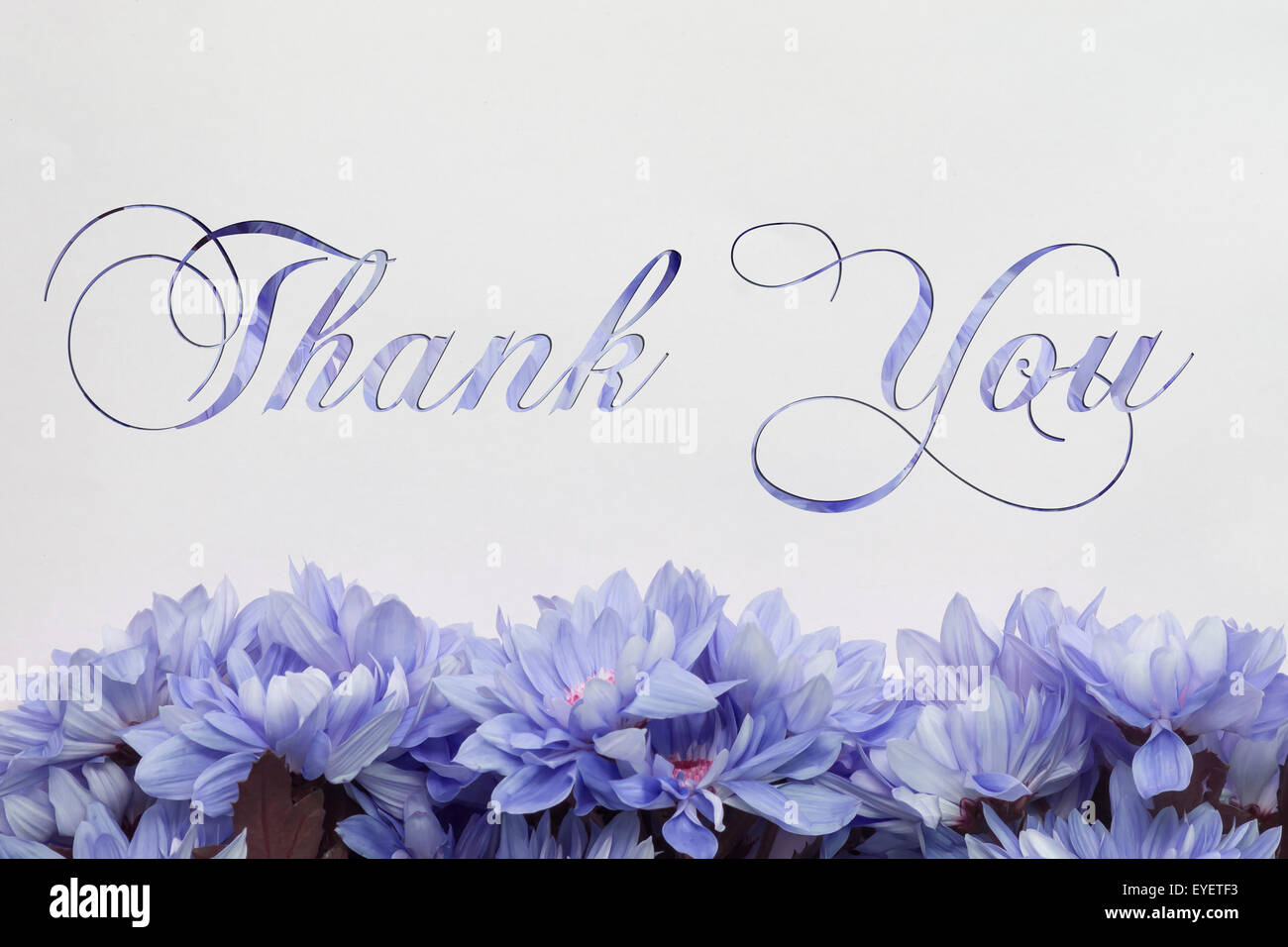 Thank you flowers and beautiful handwriting greeting card stock thank you flowers and beautiful handwriting greeting card m4hsunfo