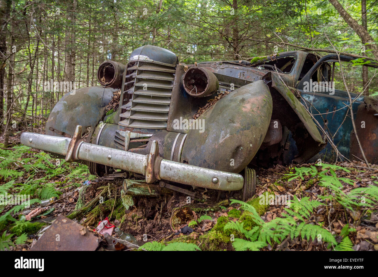Old Car in the forest with trees, at the US-Canada border - Stock Image