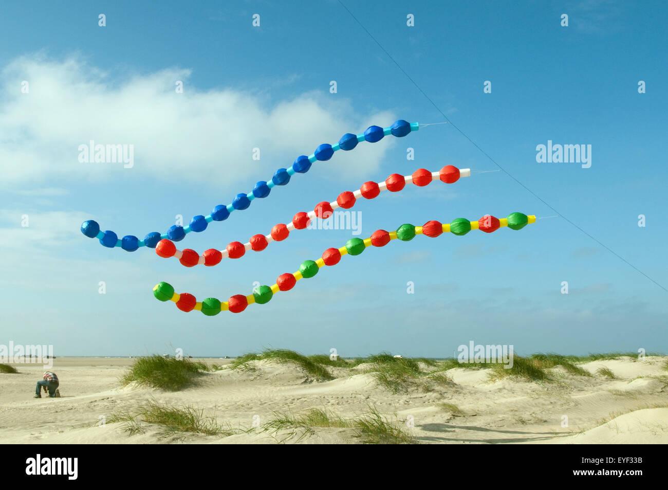 Drachen, Grossdrachen, Winddrachen, - Stock Image