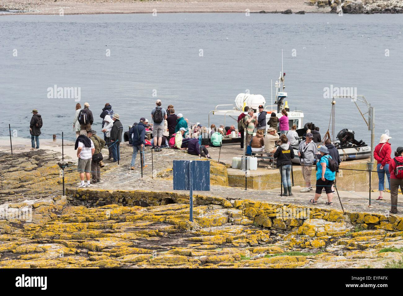 Bird watchers on the Farne islands, Northumberland, England - Stock Image