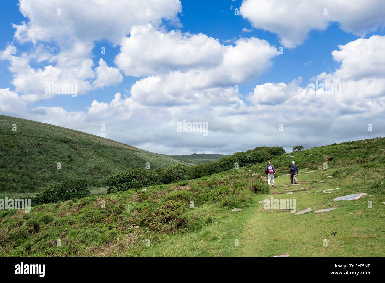 Walkers on the footpath from Two Bridges to Wistman's Wood, Dartmoor National Park, Devon, England, UK - Stock Image