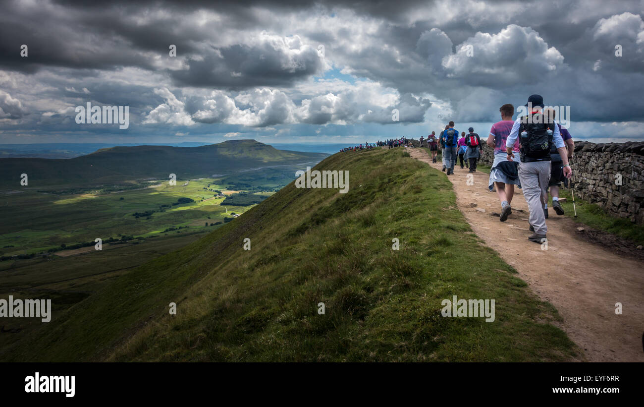Yorkshire Peaks Challenge - busy on top of Whernside - Stock Image