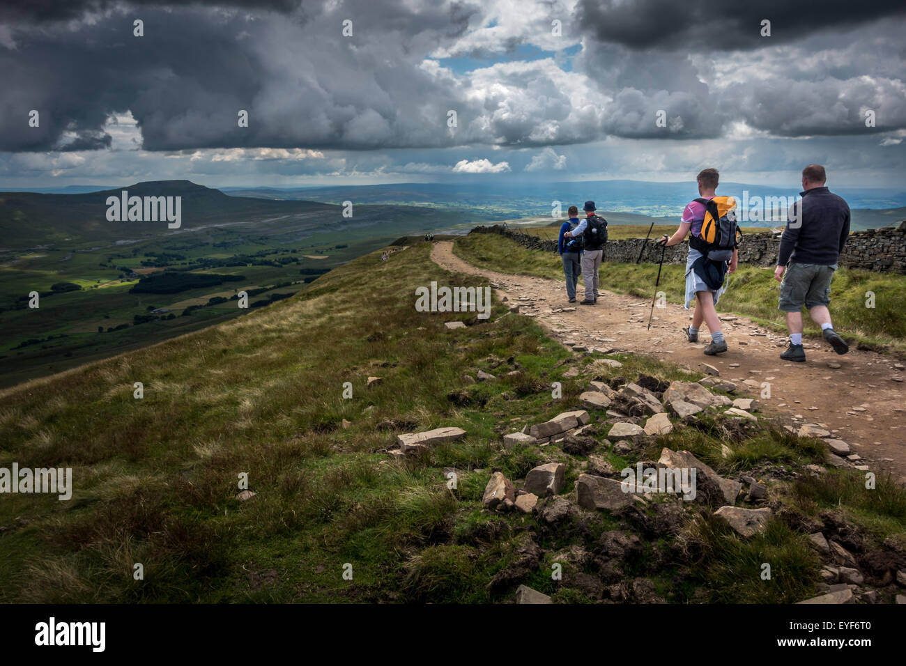 Descending off Whernside in the Yorkshire Dales countryside with Pen-y-ghent in the background - Stock Image