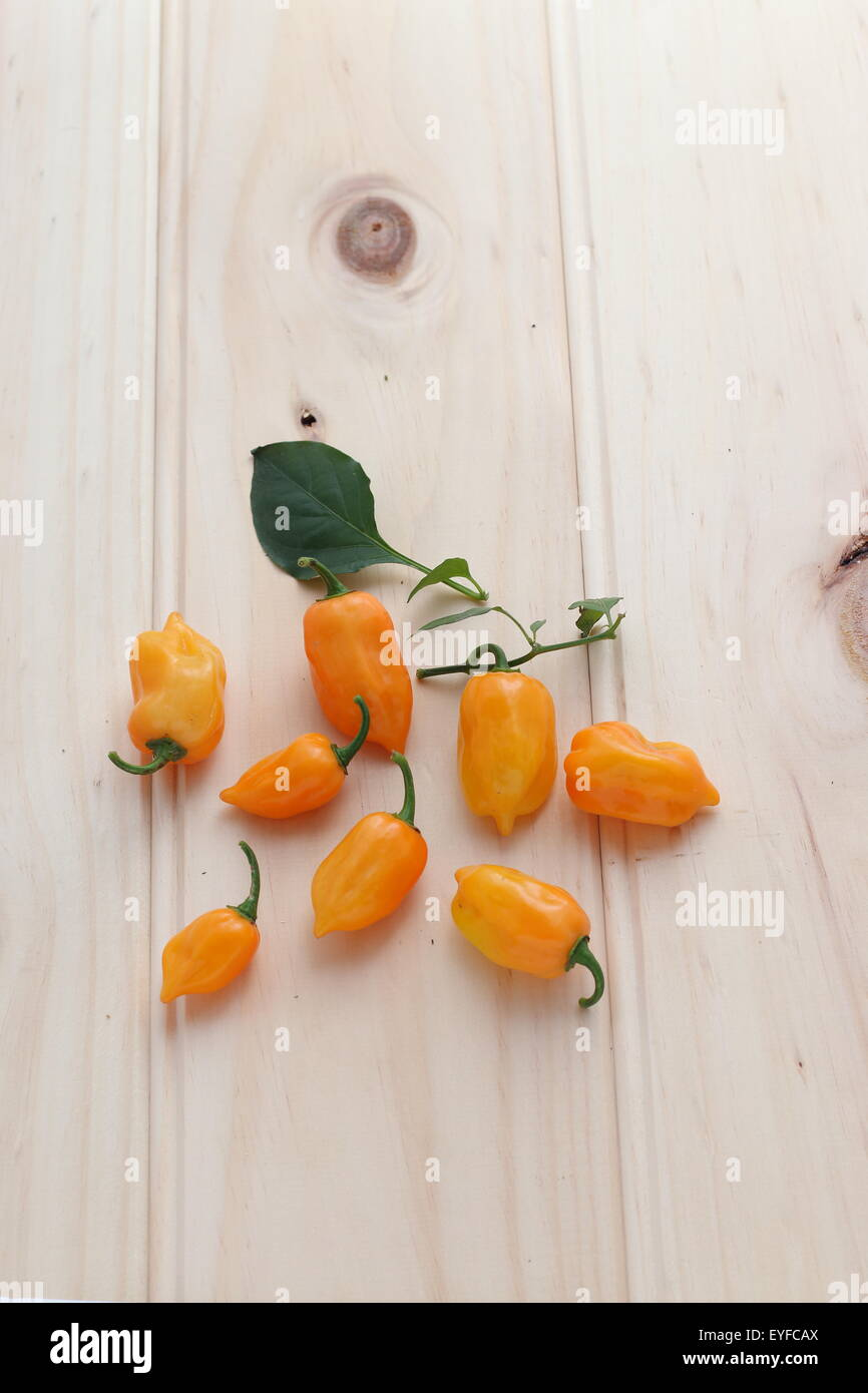 Habanero chillies on a wooden board Stock Photo