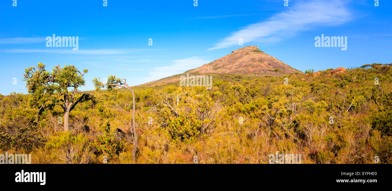 Bushland around Frenchman Peak hill in Cape Le Grand National Park - Stock Image