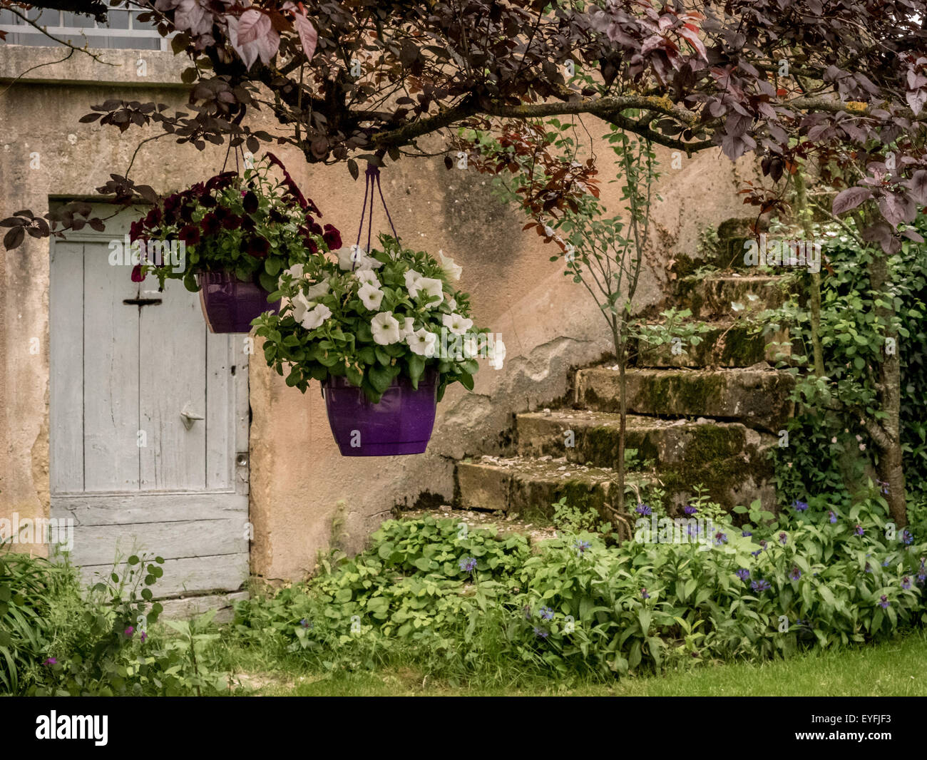 Doorway and steps old cottage in the small Medieval town of St-Eulalie-d\u0027Olt France & Doorway and steps old cottage in the small Medieval town of Stock ...