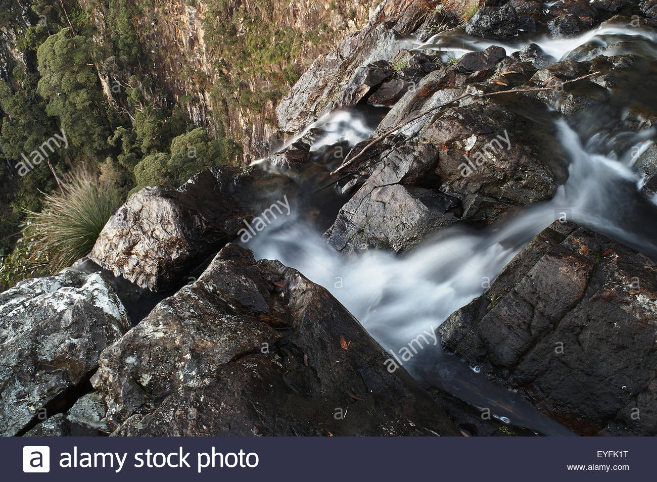 Long-exposure image taken looking over the edge of Minyon Falls, water disappearing and trees beyond; on Repentance - Stock Image