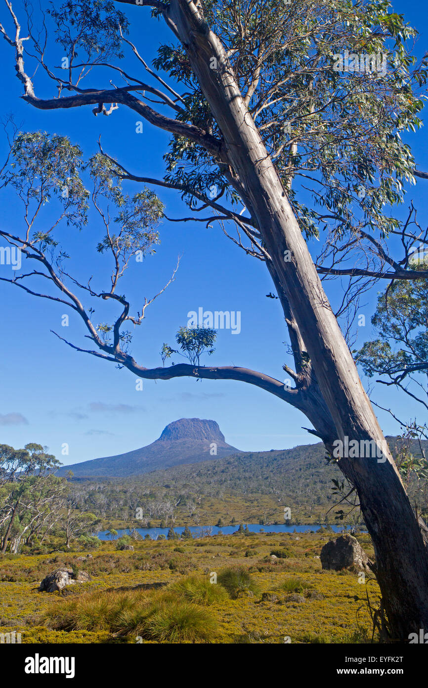 Barn Bluff viewed across Lake Windermere along the Overland Track - Stock Image