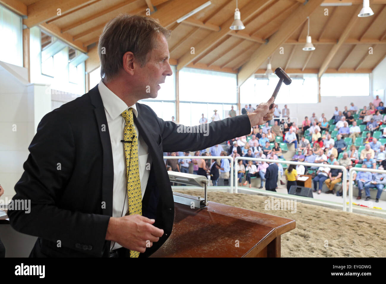 Iffezheim, Germany, auctioneer Daniel Delius at work - Stock Image