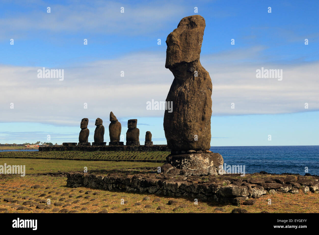 Easter Island Statues - Stock Image