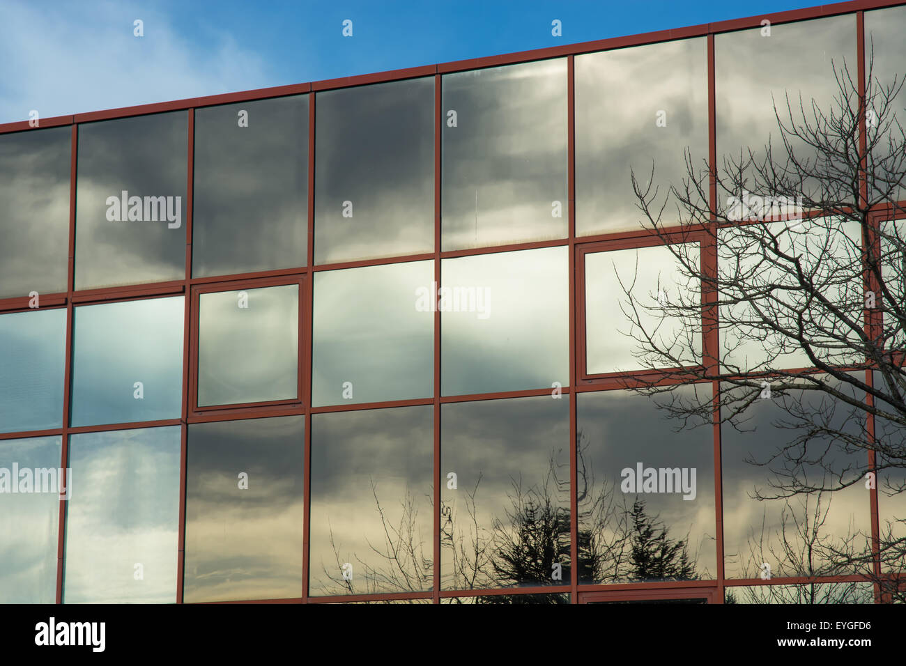 Sky reflected in the glass wall of an office building - Stock Image