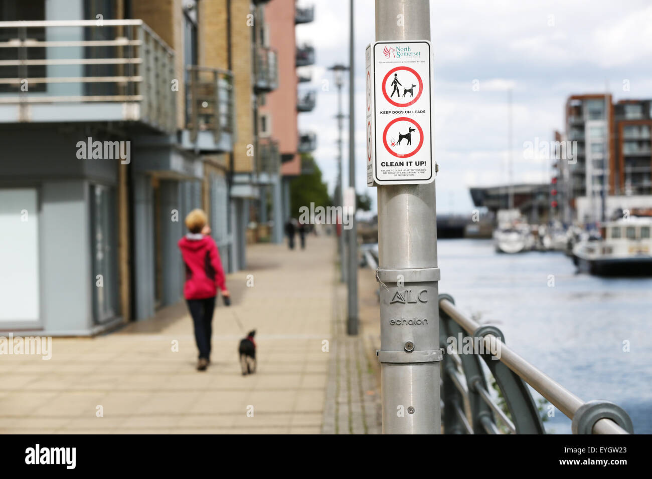 A public no 'Dog Messing' and 'Dogs on Lead' sign on lamp post in city area, a dog walker with a - Stock Image