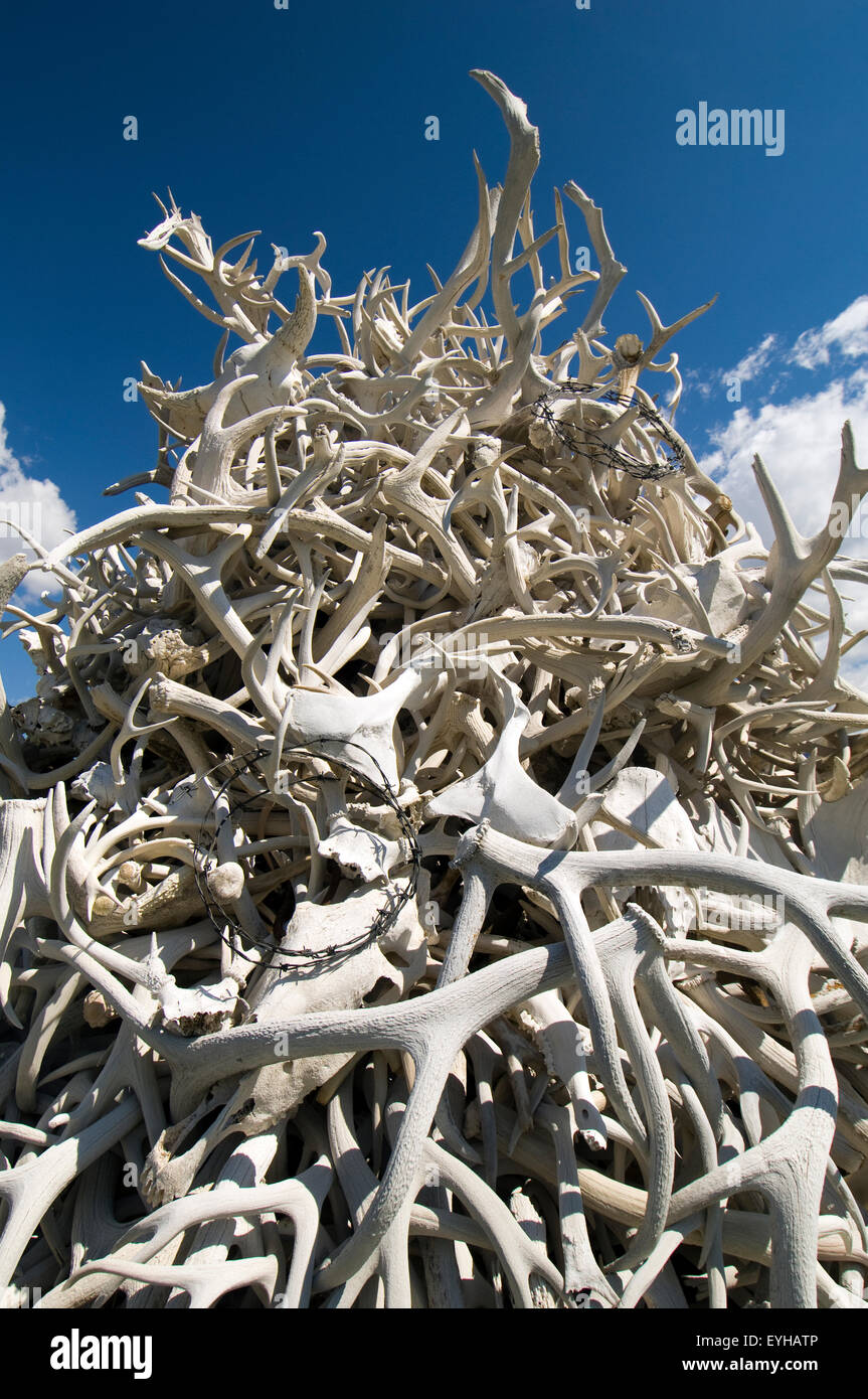 Huge pile of antlers outside Cody, Wyoming, USA. - Stock Image