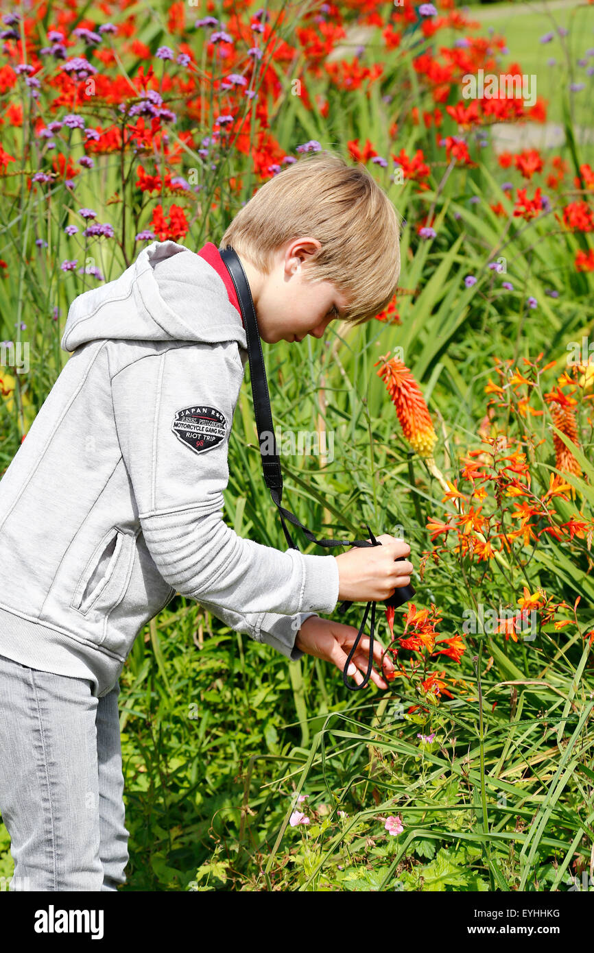 young boy takes picture of flower - Stock Image
