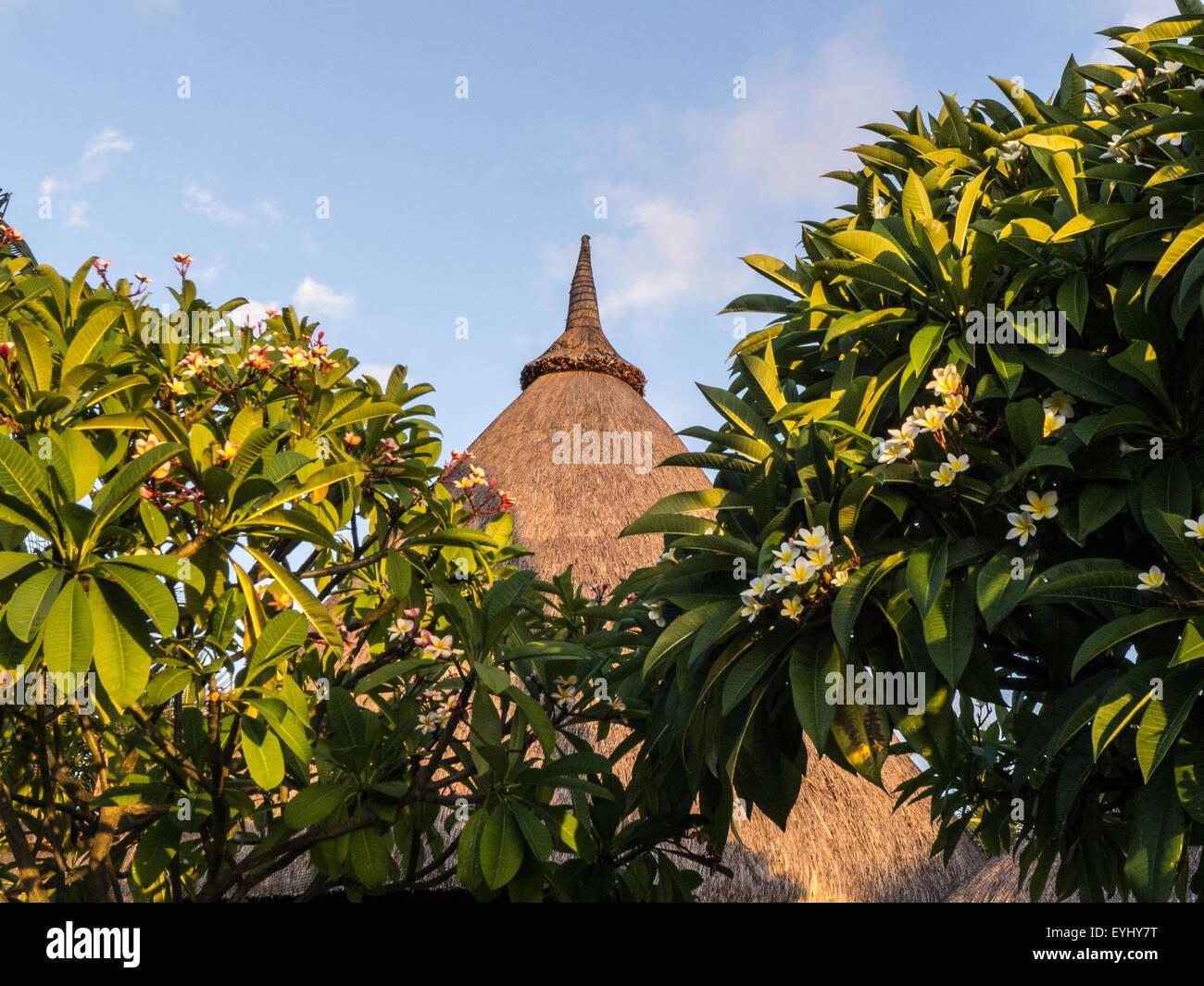 Flic en Flac, Mauritius. La Pirogue tourist resort. Traditional thatch roof and Frangipani trees. Stock Photo