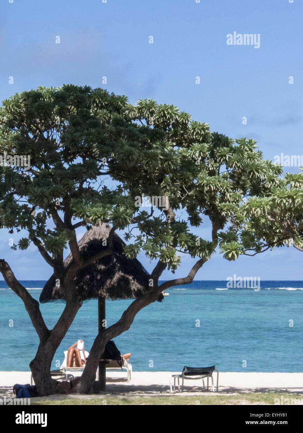 Flic en Flac, Mauritius. La Pirogue tourist resort. Sunlounger, tree and sea. Stock Photo