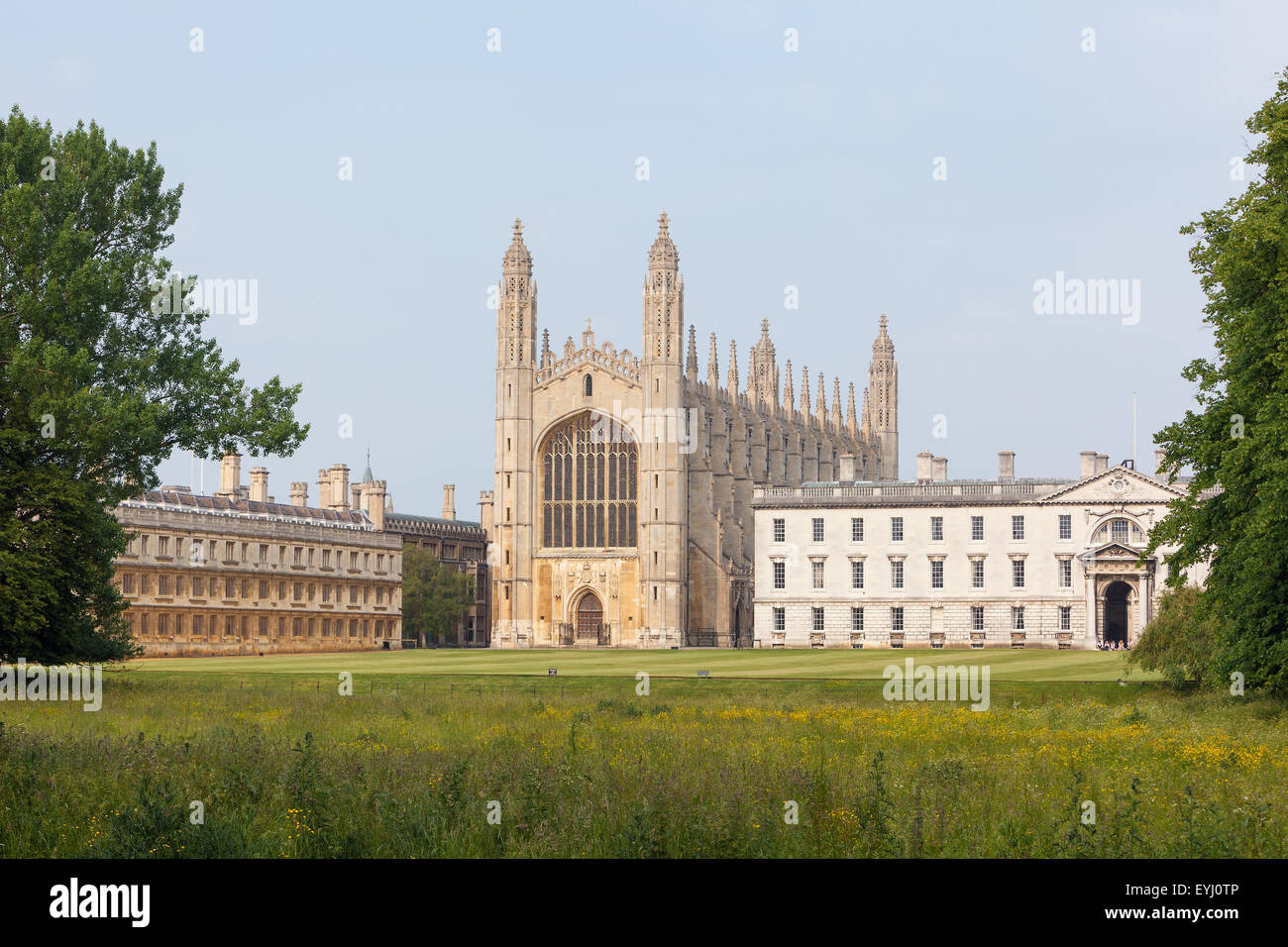 University of Cambridge buildings viewed from the back of the River Cam - Stock Image
