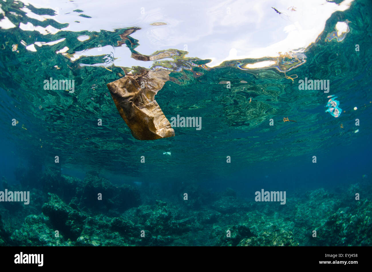 Debris floating in the water column including plastic and other garbage, Tulamben, Bali, Indonesia, Pacific Ocean - Stock Image