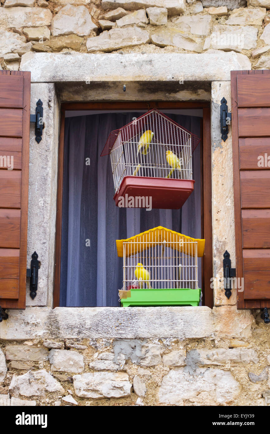 Beram, Istria, Croatia. An unspoilt medieval hilltop village. Caged canaries hang in a shuttered window - Stock Image