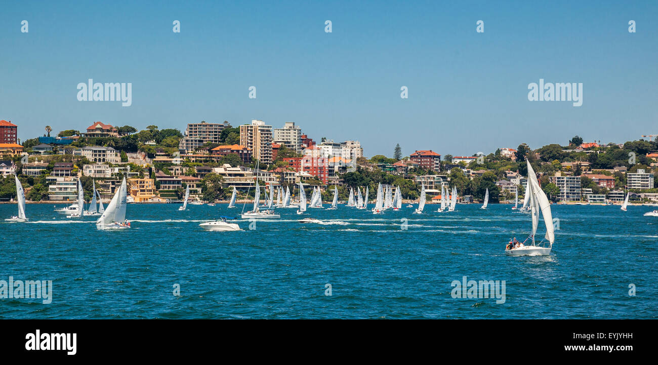 Australia, New South Wales, Sydney Harbour, sailing boats of the Double Bay Sailing Club racing at Point Piper - Stock Image