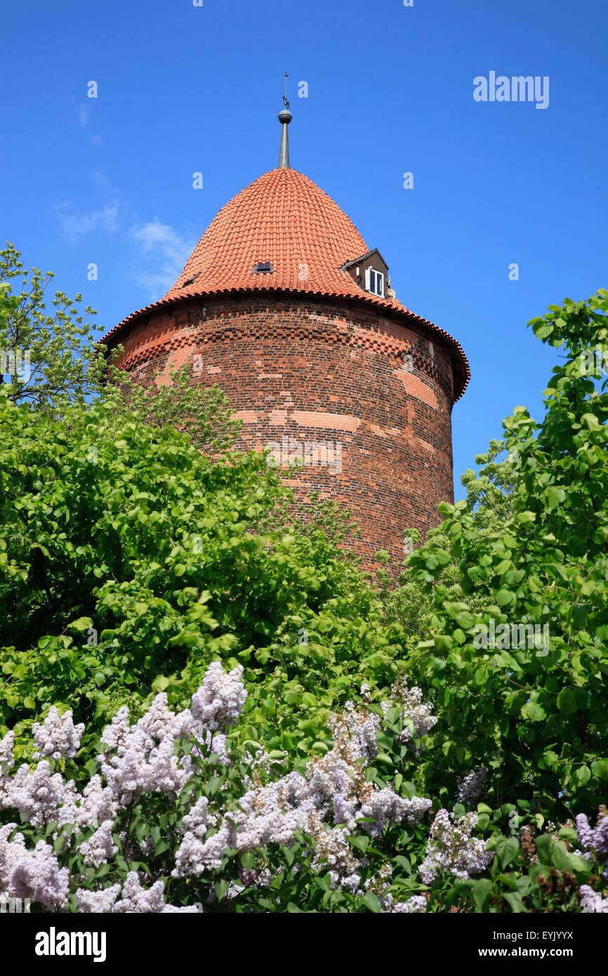 Waldemarturm, Dannenberg, Wendland, Lower Saxony, Germany, Europe - Stock Image