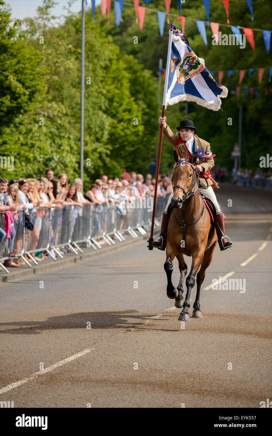 Selkirk Common Riding 2015. The Standard Bearer gallops in at the Toll. - Stock Image