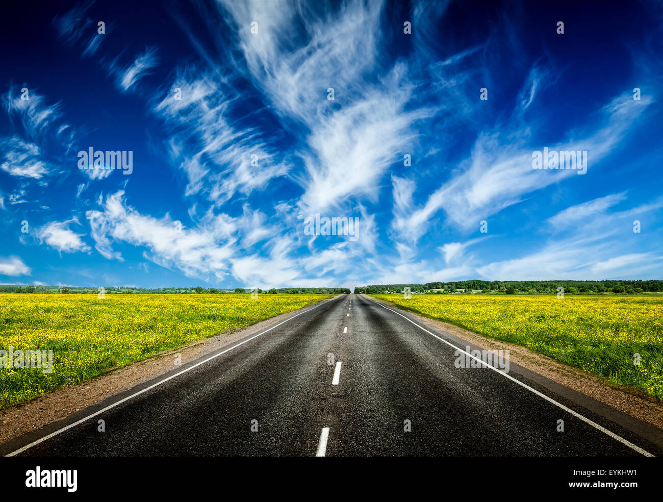 Travel concept background - road in blooming spring meadow - Stock Image