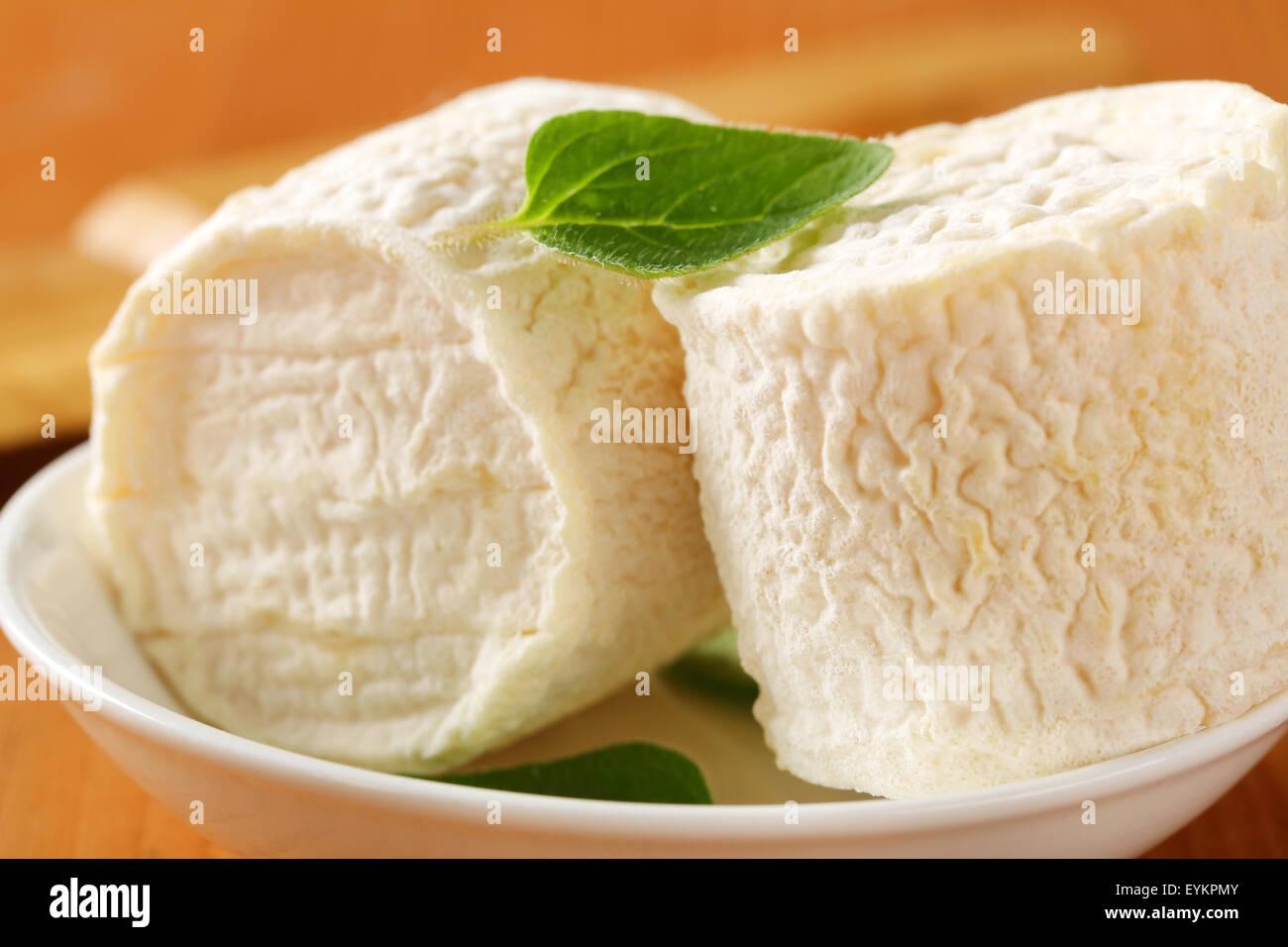 Crottins de Chevre - French goat's milk cheese - Stock Image