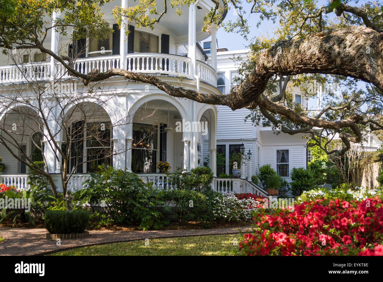 Historic Meeting House Inn at Meeting St and the Battery in Charleston, SC. Flowering azaleas are visible in the - Stock Image