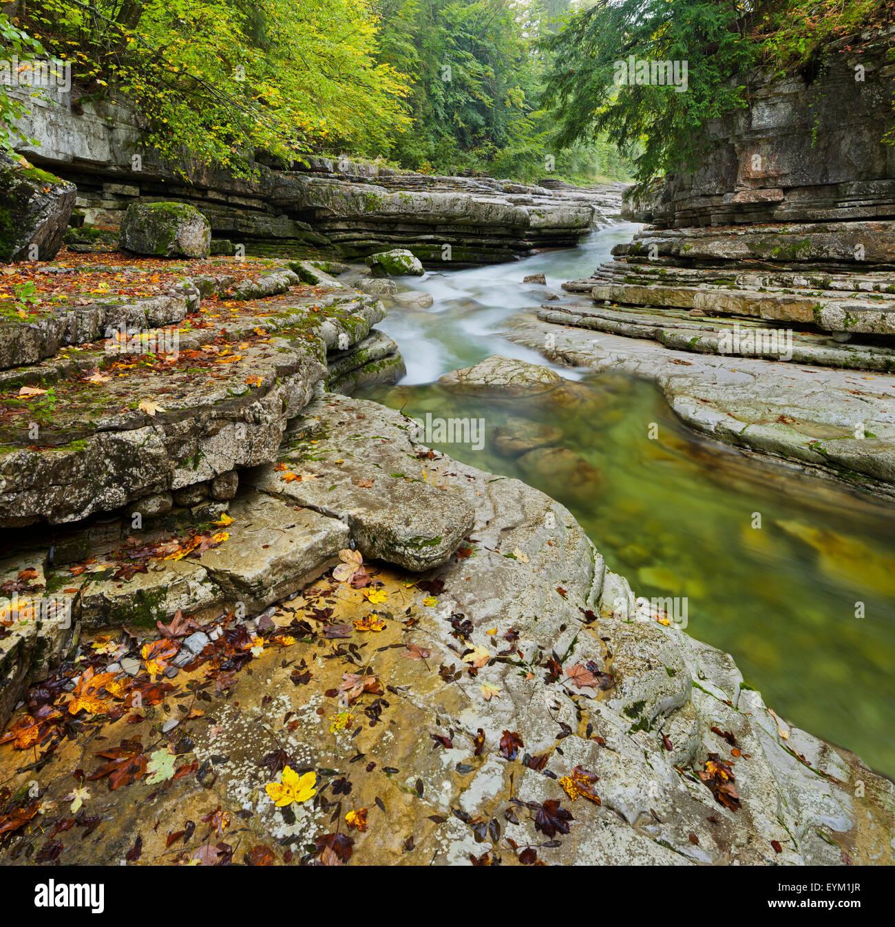 Brook Taugl, gorge, Hallein, Salzburg country, Austria, Stock Photo