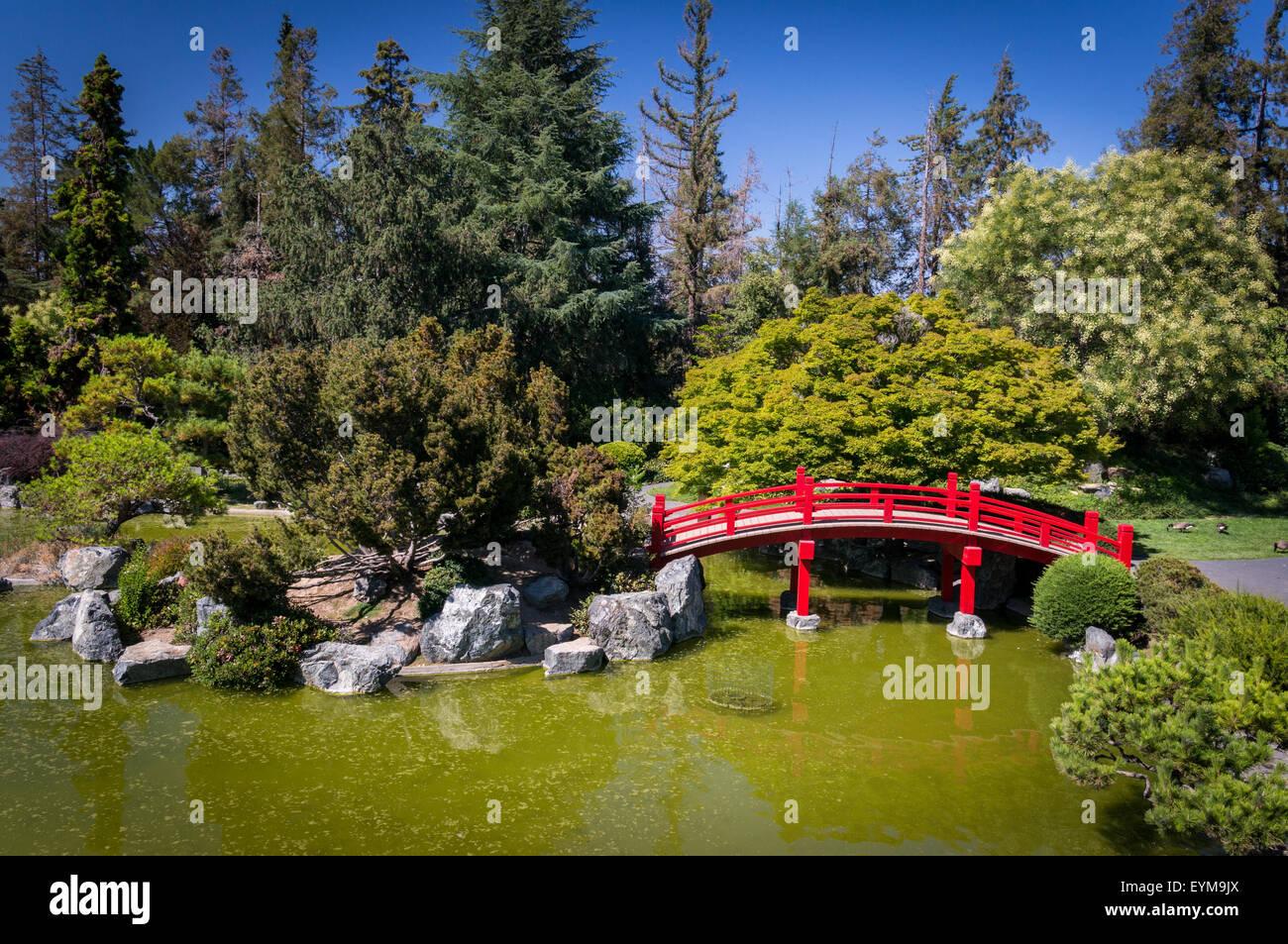 japanese friendship garden, kelley park, san jose, california stock