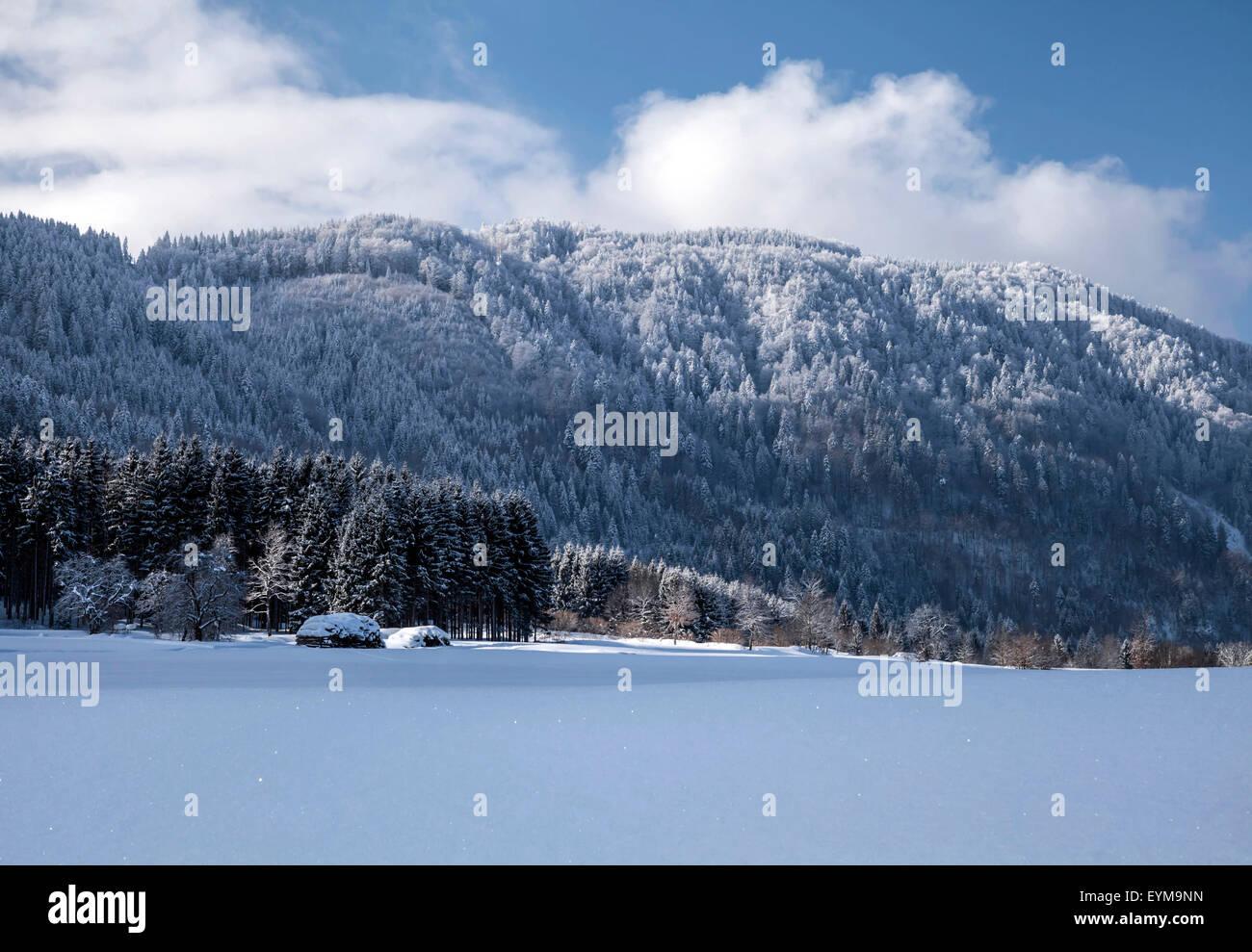 Winterlandschaft am Dreiländereck bei Arnoldstein, Kärnten, Österreich Stock Photo