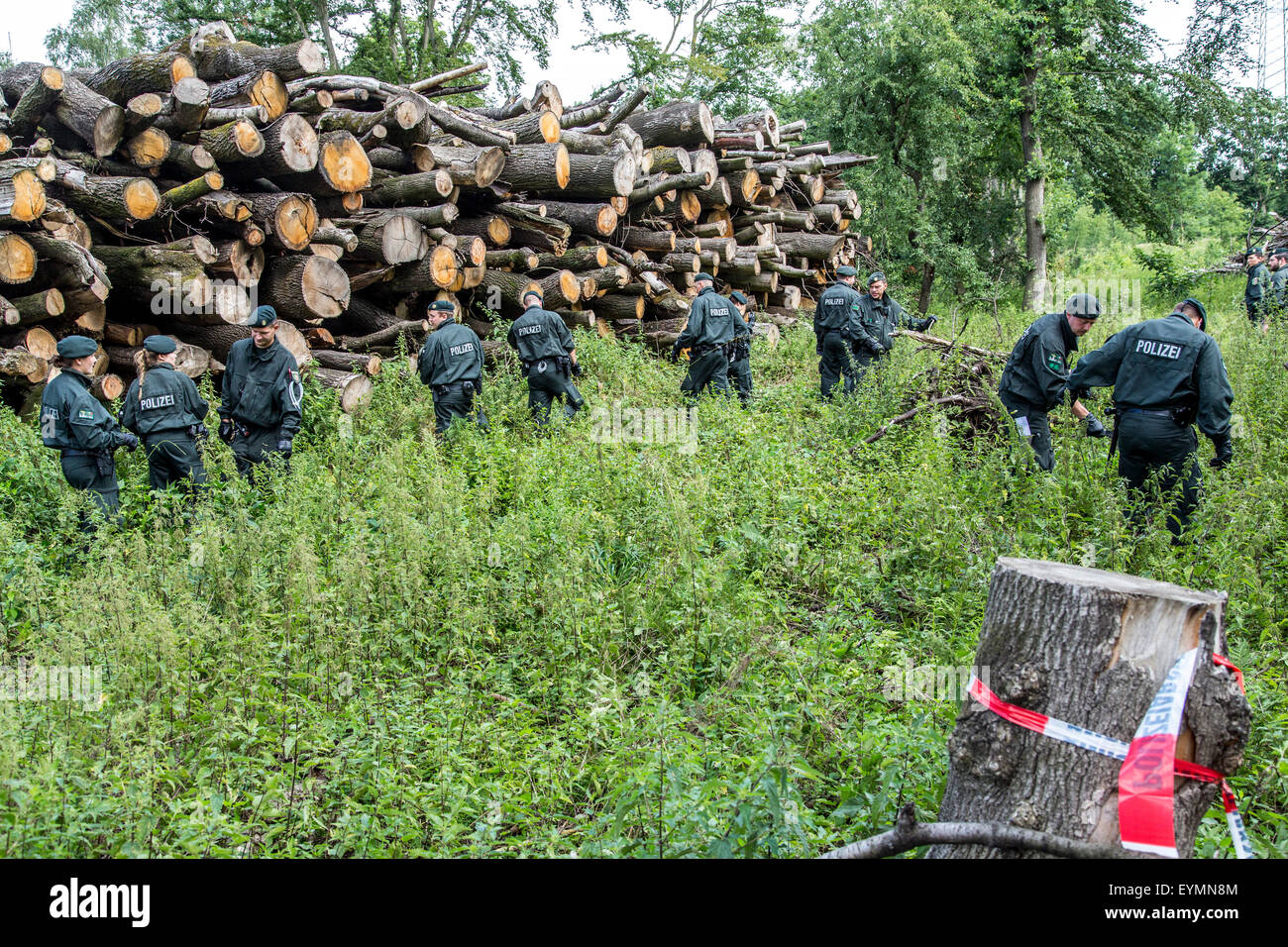 Riot police units searches a wooded area for traces of the missing Annette L., who has been missing for 5 years. - Stock Image