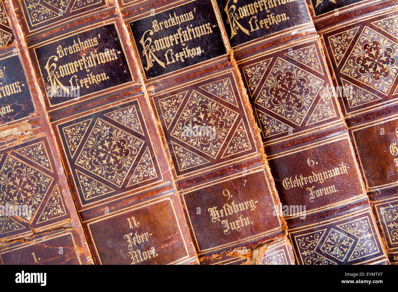 German encyclopedia Brockhaus, 19th Century, - Stock Image