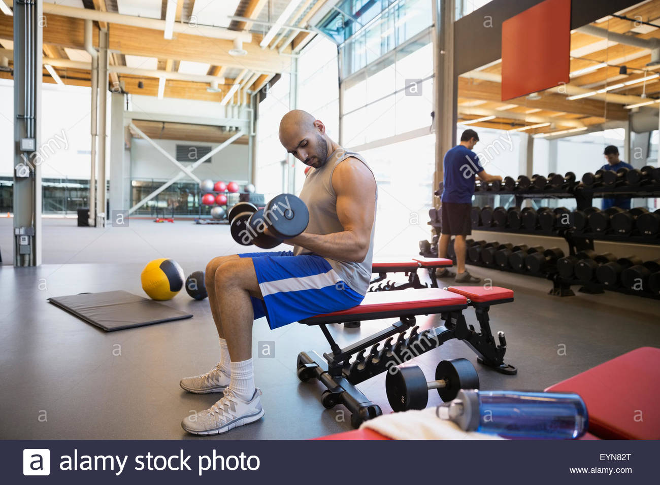 Man doing dumbbell biceps curls bench at gym - Stock Image