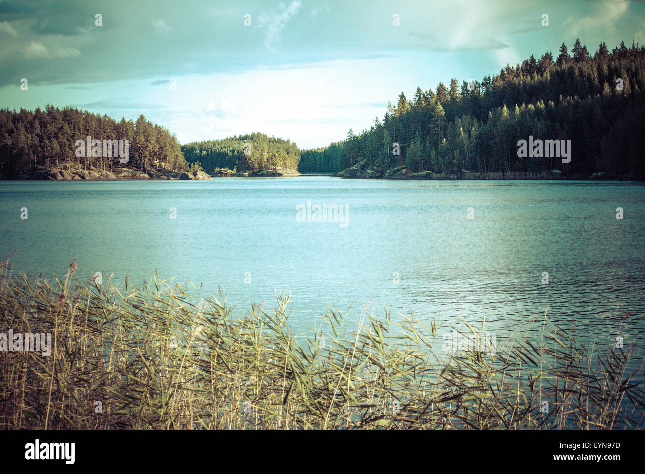 Vintage toned image of lake and forest, Finland Stock Photo