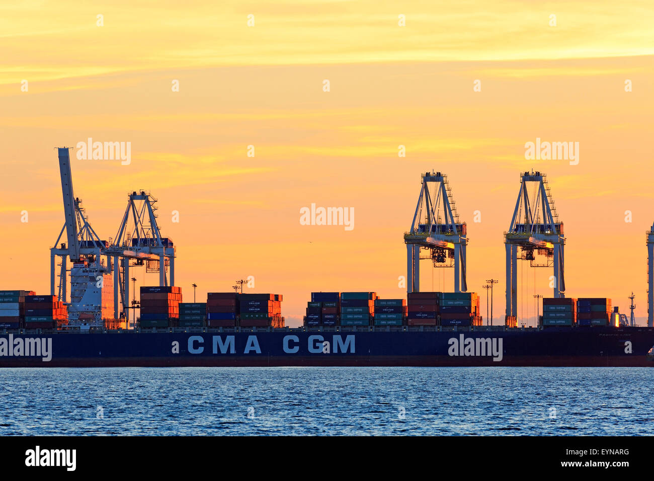 Container cranes atsunset, Deltaport container terminal, Roberts Bank, British Columbia - Stock Image