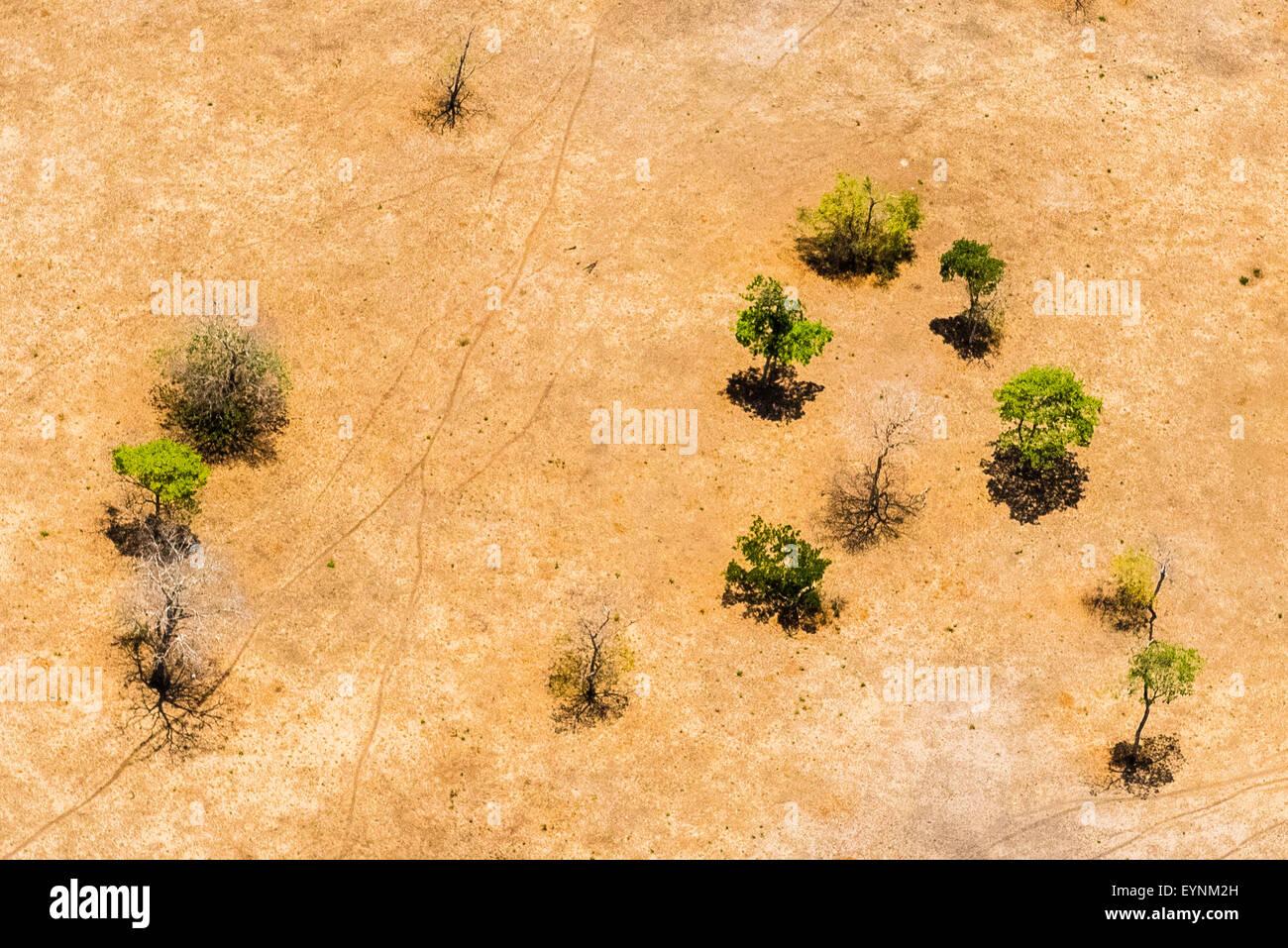 A semi arid scene in northern Costa Rica - Stock Image