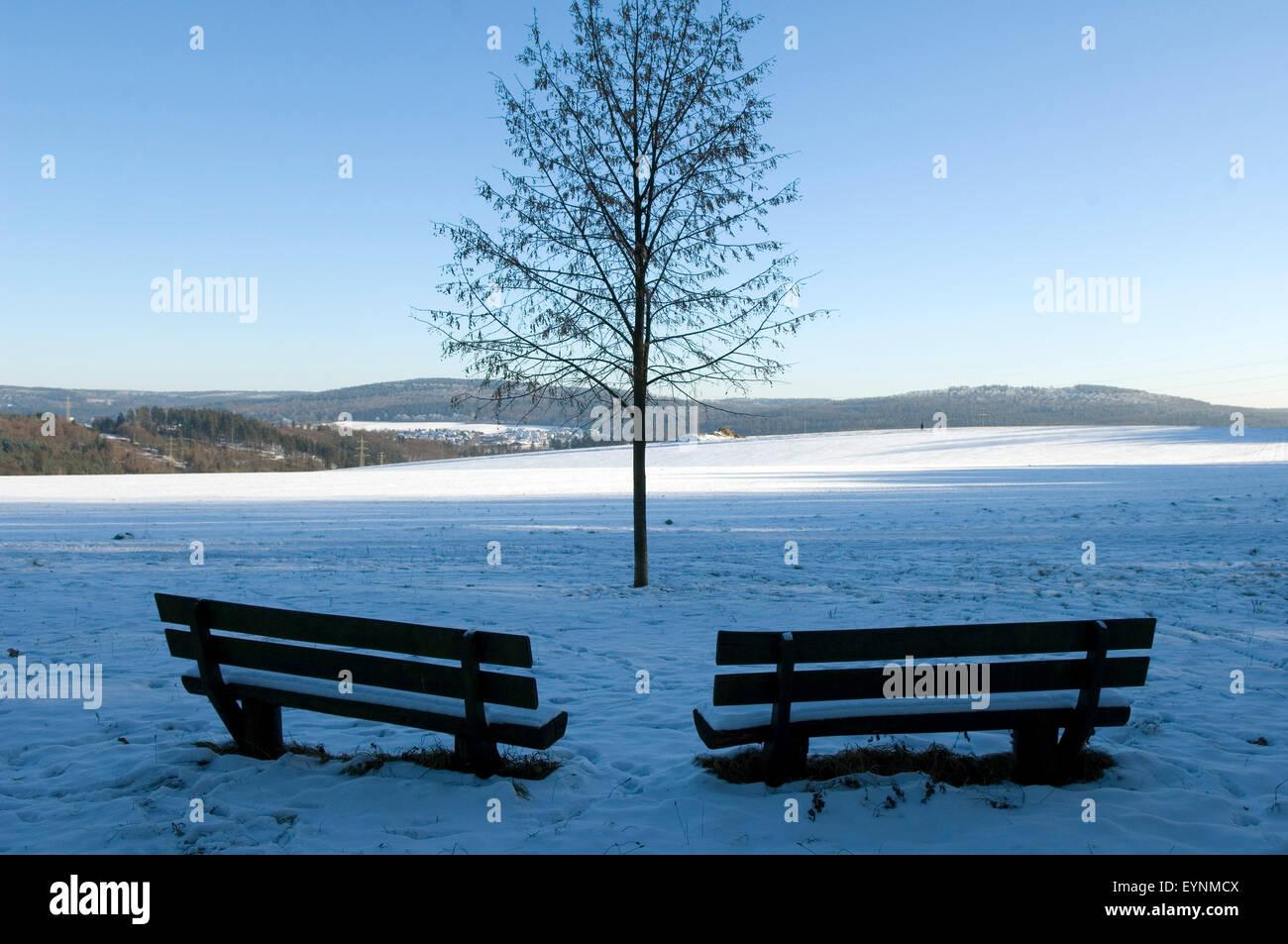 Winterlandschaft, Taunus - Stock Image