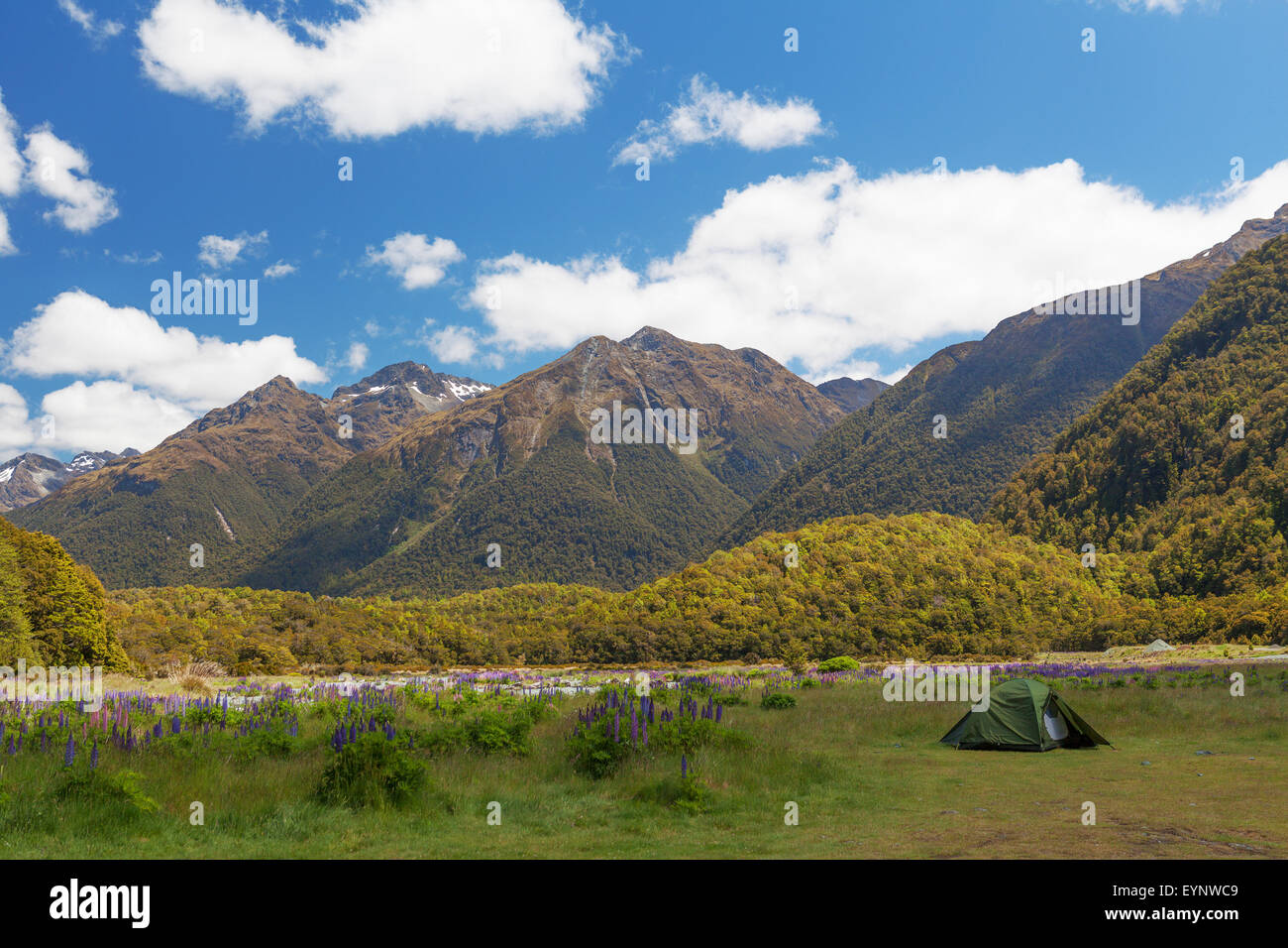 Beautiful Mountains and tramper's tent in Fiordland National Park, South Island, New Zealand - Stock Image
