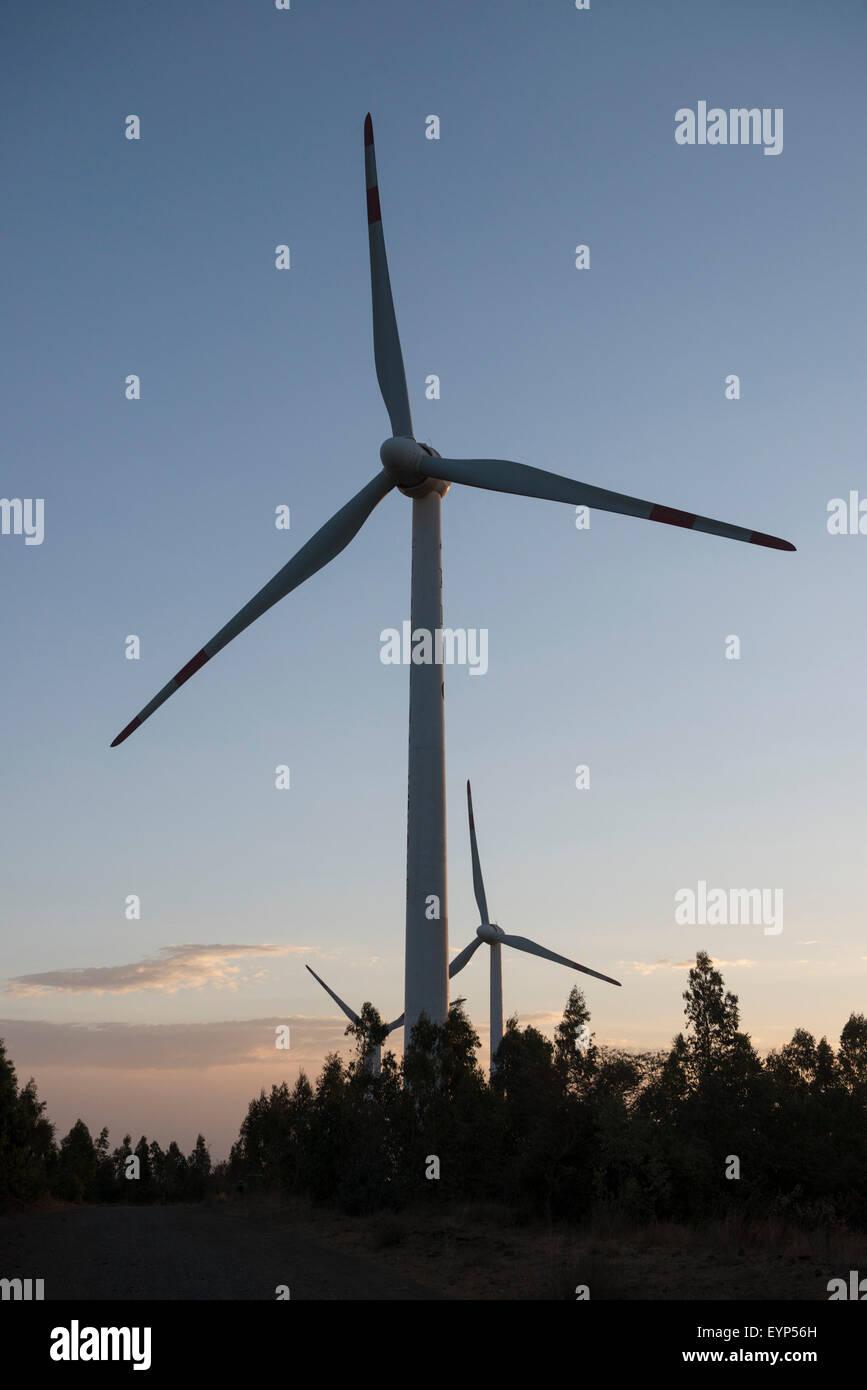 Ashegoda Wind Farm, Ethiopia - Stock Image