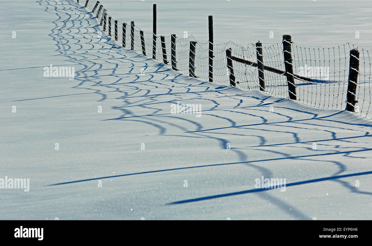 A farm fence casts its shadow on the snow during a sunny day. - Stock Image
