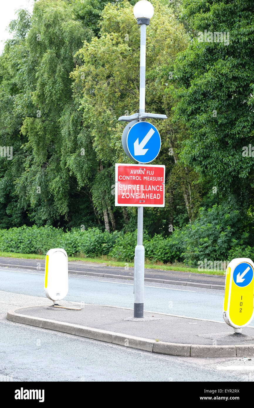 Preston, Lancashire, UK. Avian Flu Warning Sign on Preston Street. - Stock Image
