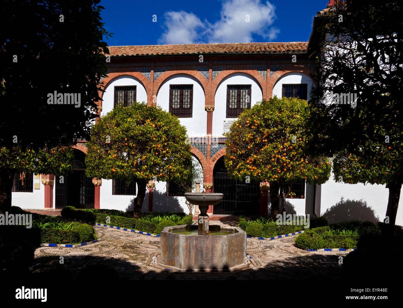 The Museum of Fine Arts in Córdoba (1862) located in the Plaza del Potro  is  the headquarters of the Julio - Stock Image