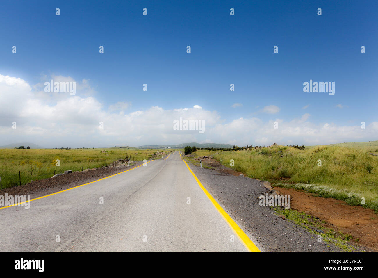 Straight road to vanishing point on the horizon with no traffic. Photographed in the Golan Heights, Israel - Stock Image